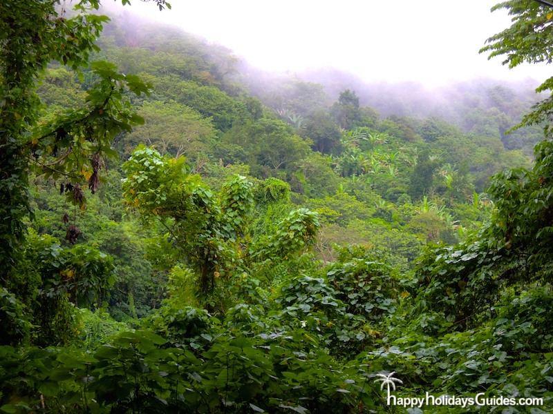 Puerto Rico Misty Mountains