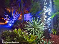 Key West Night Lights