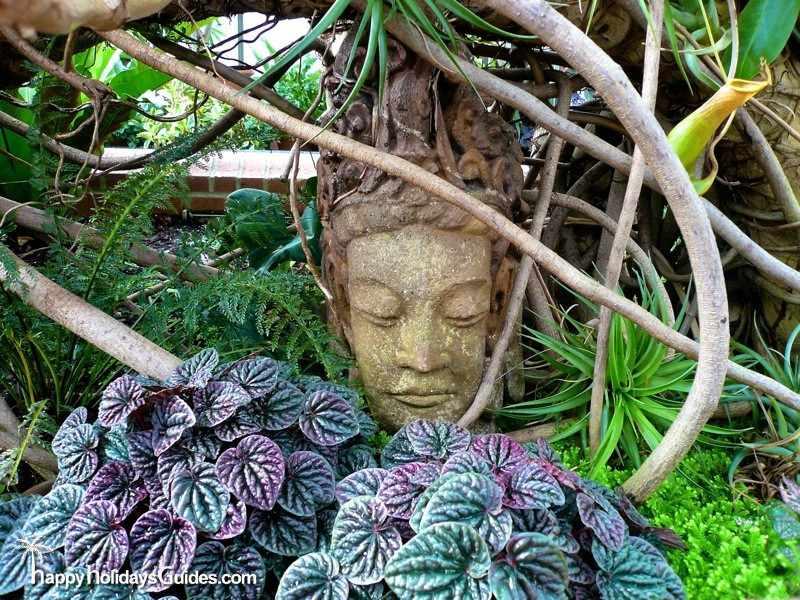 The Biltmore Estate Gardens - Photos to Make Your Camera Jealous