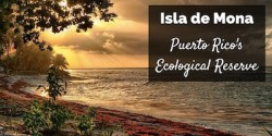 Puerto Rico Isla de Mona