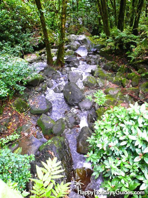 El Yunque La Coca waterfall