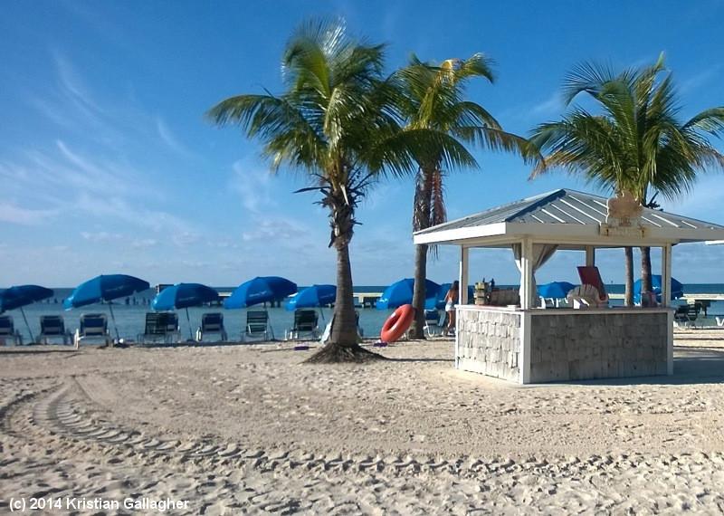 Higgs Beach Stand