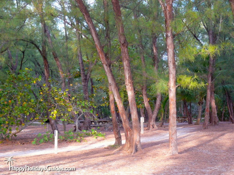 fort zachary taylor historic state park pines