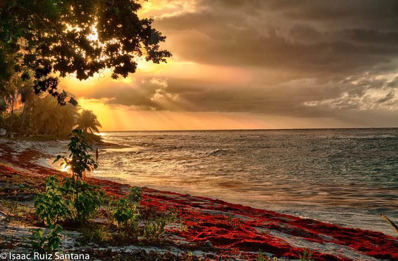 Isla de Mona Sunset 1