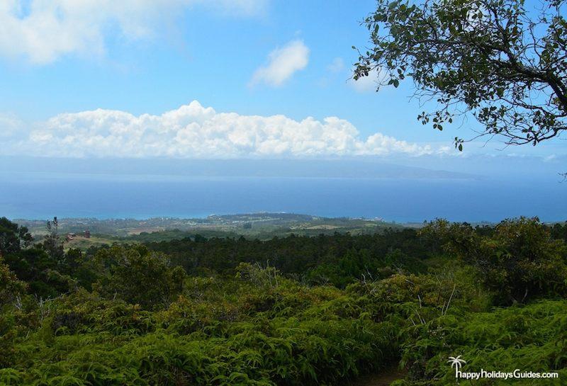 Maui Zip Lining