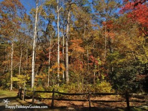 North Carolina Arboretum Fall Color
