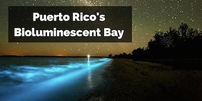 Puerto Rico Bioluminescent Bay