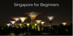 Singapore for Beginners